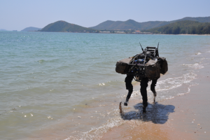 Google's Plans for Robotic Assimilation